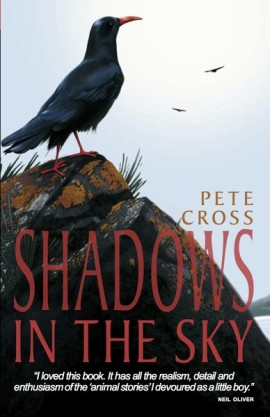 Chough Chap: Pete's 2007 winning children's novel Shadows In The Sky