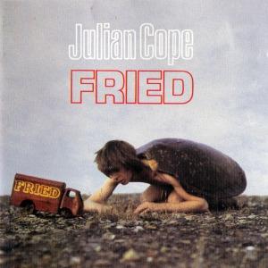 Julian_Cope-Fried