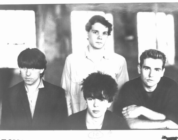Early Days: The seminal and youthful Echo and the Bunnymen line-up, with Will, left, sporting his mighty fringe