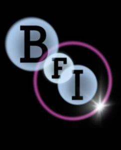 bfi-2