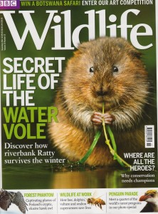 Vole Writer: Kate has been known to put pen to paper about her beloved voles, including a piece in this BBC publication