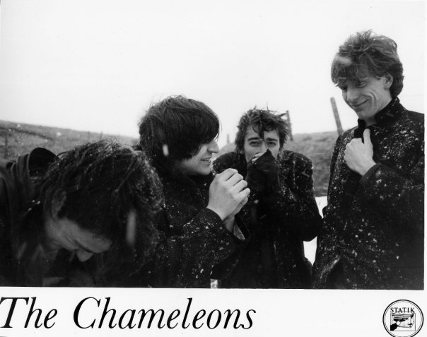 Cold Comfort: The Chameleons, back in the day, during their Statik tenure