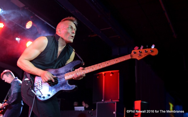 Bass Instinct: John Robb, in action with The Membranes (Photo: Phil Newall)